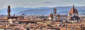 Florence panorama sur Dennis van de Water