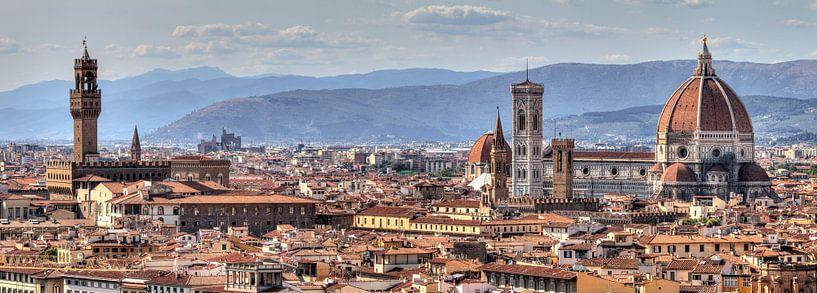 Florence panorama van Dennis van de Water