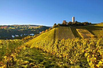 Burg Scharfenstein bei Kiedrich im Rheingau van Christian Müringer