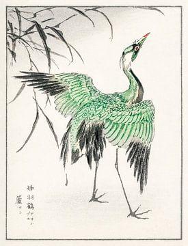Kraniche und Schilf Illustration von Numata Kashu von Studio POPPY