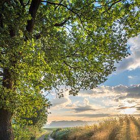 Sonnenaufgang an einer Landstraße in Windraak von John van de Gazelle