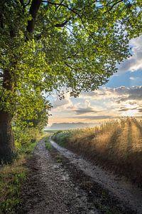 Lever de soleil sur une route de campagne à Windraak sur John van de Gazelle