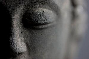 Buddha von Falko Follert