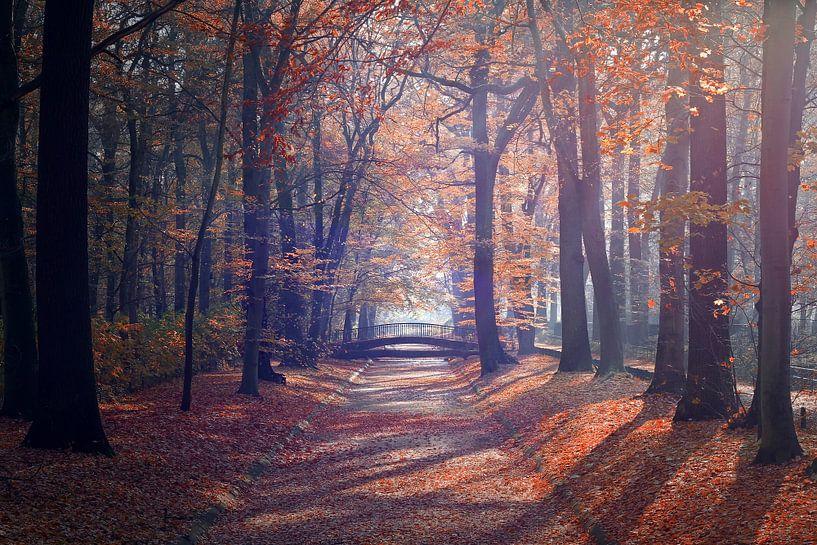 Herbst in Berlin von Heiko Lehmann