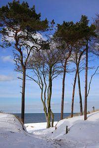 Ostsee Weststrand