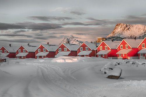 Rode huisjes in de sneeuw van