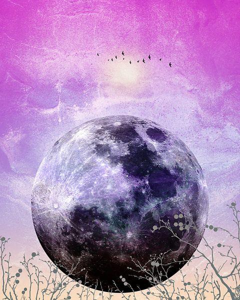 MOON under MAGIC SKY VII van Pia Schneider