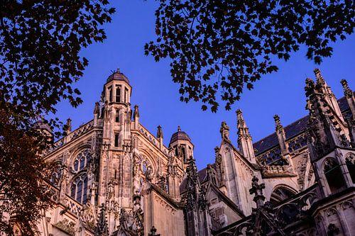 Sint Jan Kathedraal van Douwe Schut