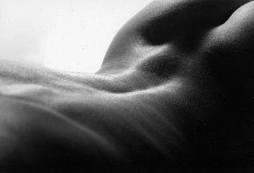 unter Rücken einer nackten Frau von Cor Heijnen