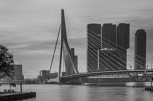 skyline van rotterdam met erasmusbrug in zwartwit