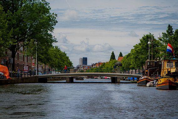 Pauwbrug Leiden, Oude Singel / Hooigracht
