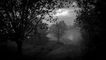 Zandpad in de mist van Noud de Greef
