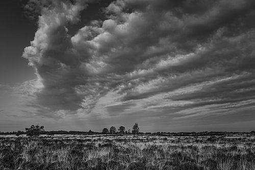 wolkenlucht in zwart/wit