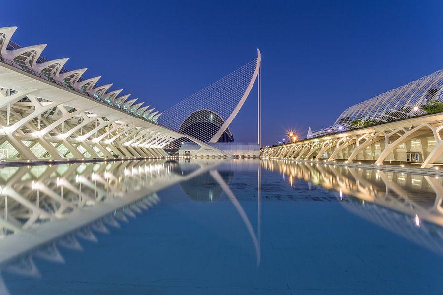 City of Arts and Sciences, Valencia - 2 van Tux Photography