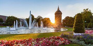 Friedrichsplatz in Mannheim bei Sonnenuntergang von Werner Dieterich