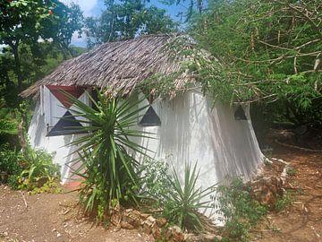 Huis Curaçao op Cariben van Atelier Liesjes