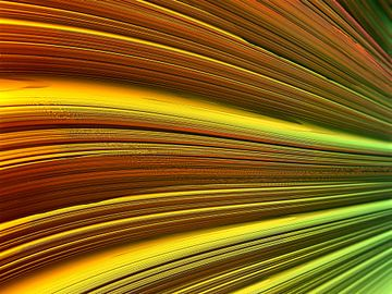 Fraktale Linien. von Frank Heinz