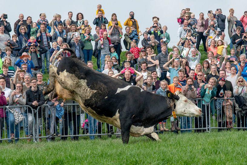Tanzende Kuh von Danny de Jong