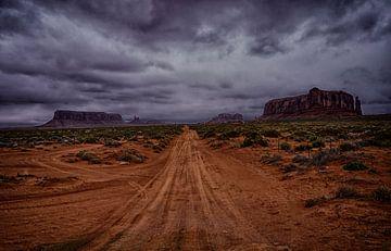 Monument Valley van Tineke Visscher
