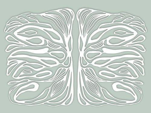 Life symmetries, wit van Cora Verhagen