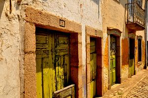 Green doors van