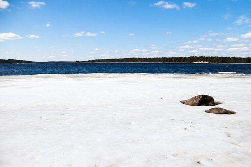 Bevroren meer in Finland