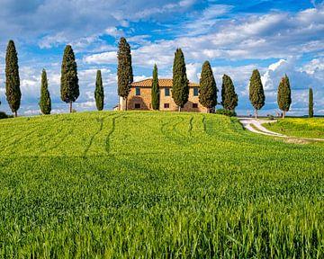 Agriturismo I Cipressini - Toscane van Teun Ruijters