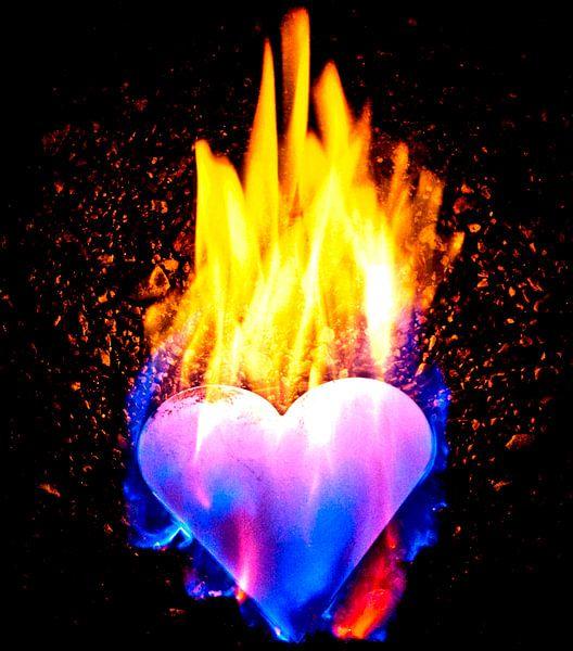 burning heart (7) van Norbert Sülzner