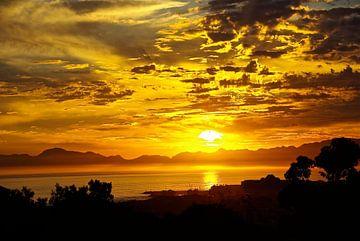 Good Night Cape