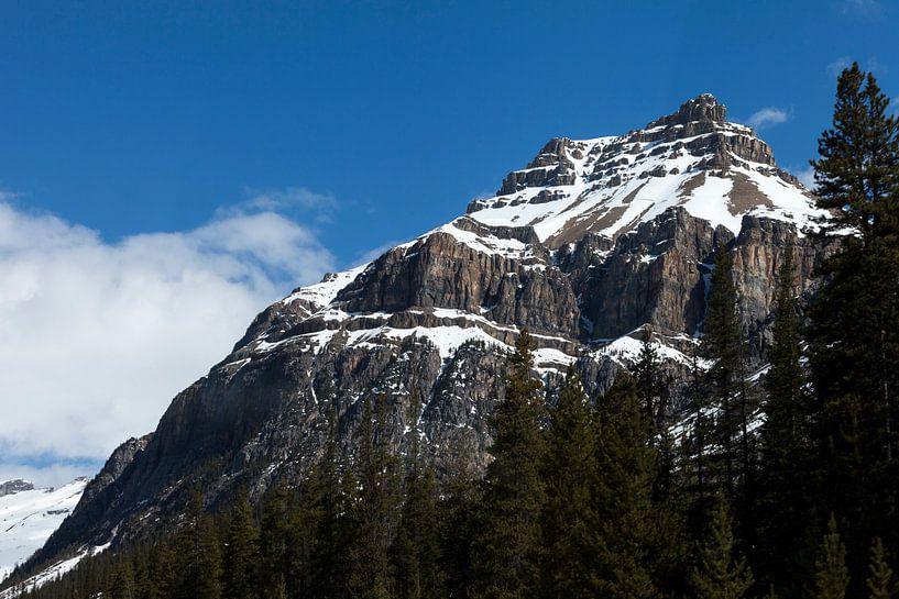 Berg in de Rocky Mountains van Irene Hoekstra
