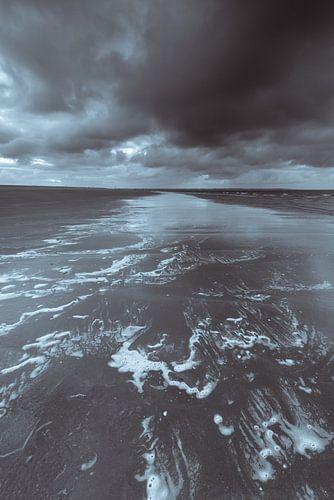 Maasvlakte 5