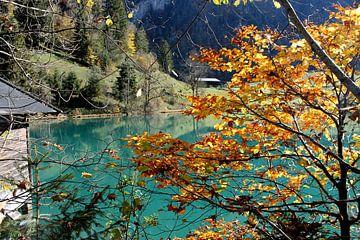 Herbstpracht Hintersee von Gerlinde Roebersen