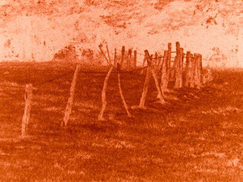 Dansend hek