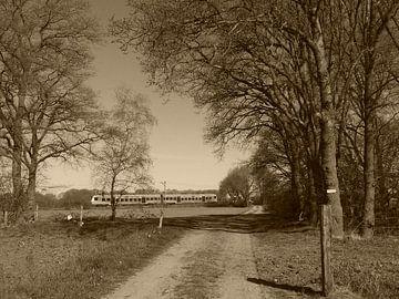 De vallei trein bij de goudsberg van Wilbert Van Veldhuizen