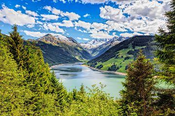 de alpen in de zomer van eric van der eijk