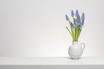 Blauwe druifjes von Elles Rijsdijk