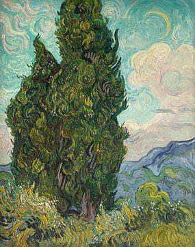 Cypresses, Vincent van Gogh