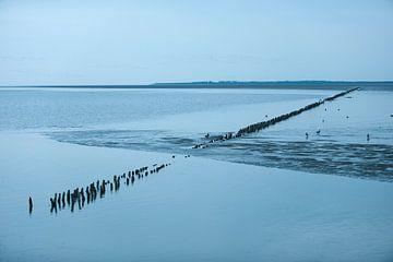 Wattenmeer, Niederlande von Remke Spijkers