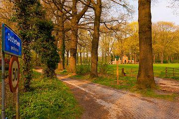 Airborne War Cemetery Oosterbeek. van Brian Morgan