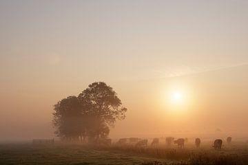 Nederlands polderlandschap II von Mark Leeman
