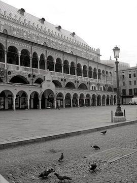 Piazza dei Signori Padua - Italie von Isabelle Val