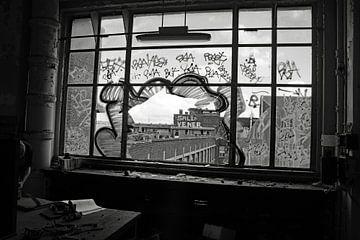 Blick durch ein zerbrochenes Fenster von wil spijker