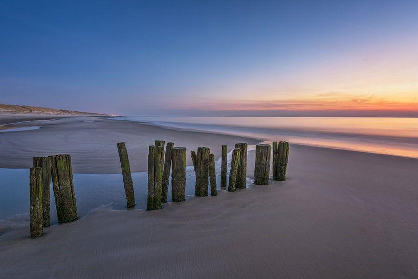 Palen op strand na zonsondergang van Pieter Struiksma