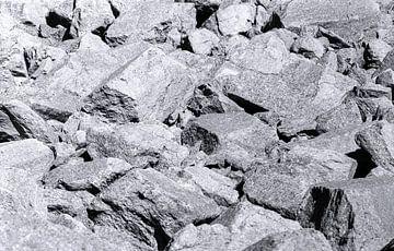 Scree veld van achthoekige basalt kolommen bij Devils Tower, USA. van Gerwin Schadl