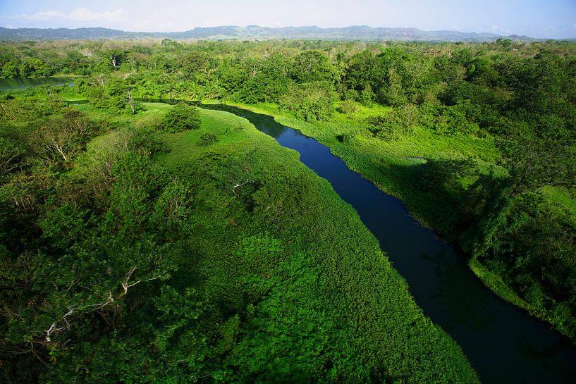 Luftaufnahme des Chagres-Flusses im Soberania Nationalpark, Panama von Nature in Stock