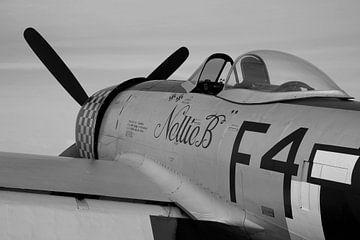 Republik P-47D Thunderbolt Warbird von Arjan Dijksterhuis
