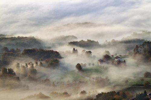 Mysterieuze mist van
