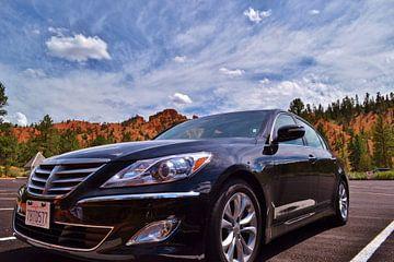 Hyundai in de Verenigde Staten van Joël Zwart