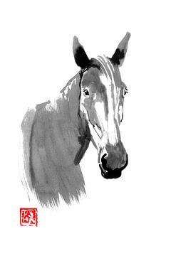 Pferdekopf von philippe imbert