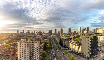 Rotterdam in het goud van Arisca van 't Hof